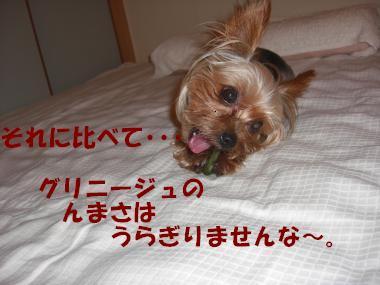 COCO+006_convert_20110828141923_20110828153141.jpg
