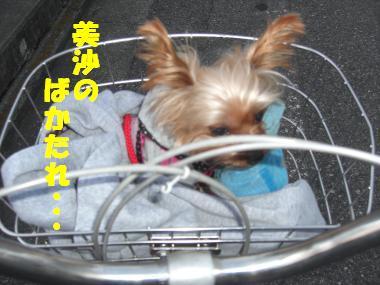 COCO+006_convert_20120222020958.jpg