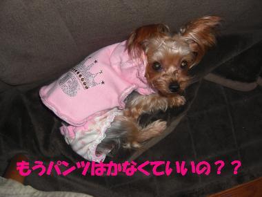 COCO+007_convert_20101128180710.jpg