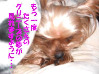 COCO+007_convert_20110202233108.jpg