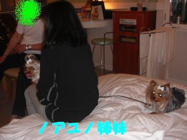 COCO+011_convert_20120419132800.jpg