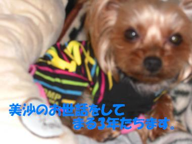 COCO+013_convert_20110226212943.jpg