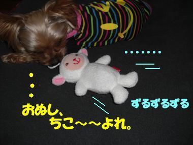 COCO+021_convert_20110226212709.jpg