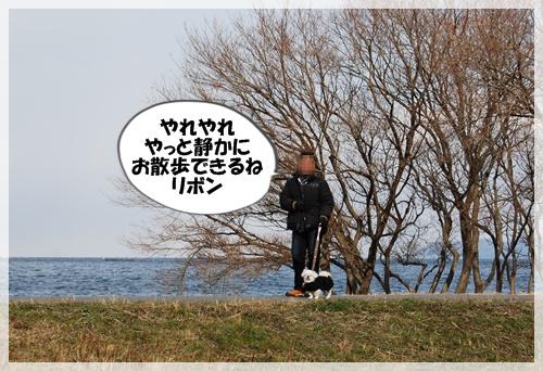 DSC_1800.jpg