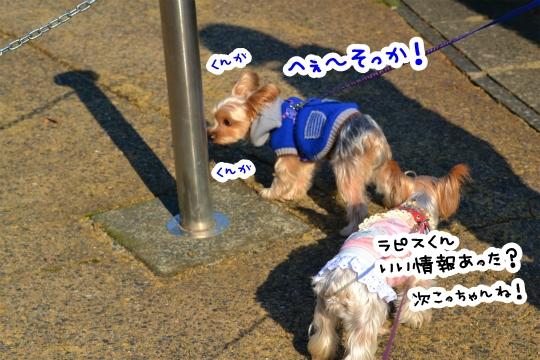 ラピスくんと初デート (2)