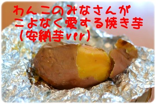 H26 01 10 (3)