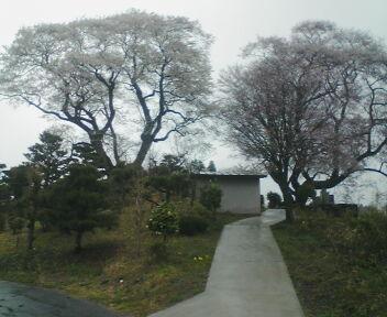 2010-04-28_16-20.jpg