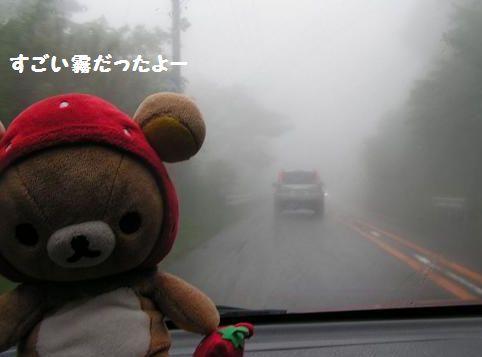 すごい霧でした