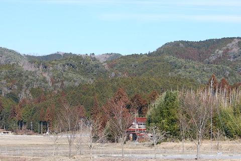 村の一番高い山