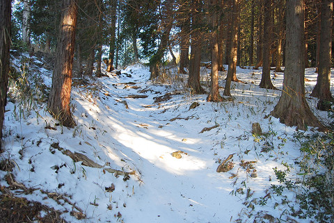 巴山付近の雪道1