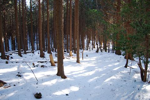 巴山付近の雪道2