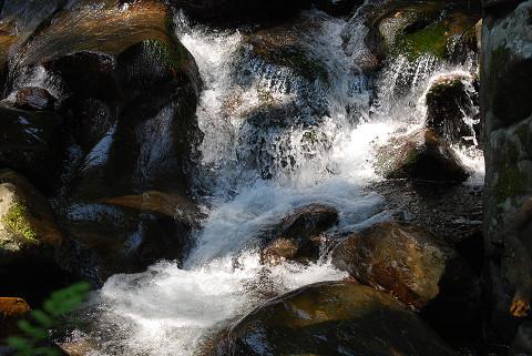 渓流の風景3