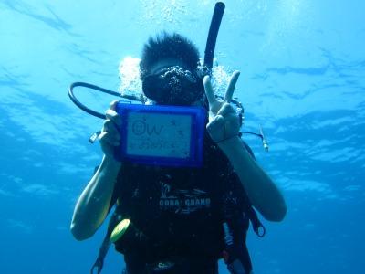 タオ島 ダイビング OW誕生
