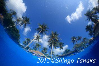 タオ島、イメージ
