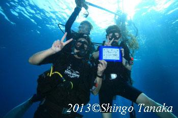タオ島、新婚旅行