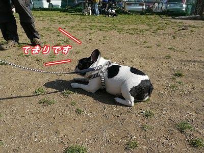 疲れた (11)