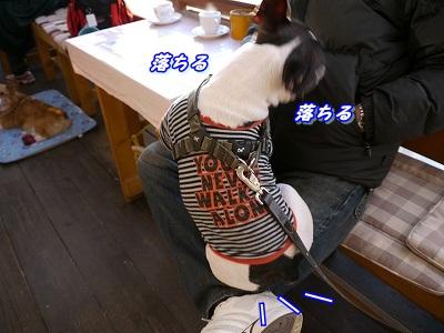 同じ顔 (7)