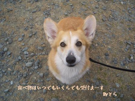 お菓子ください!!