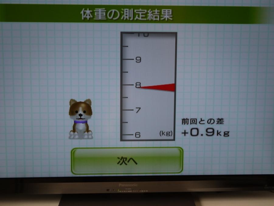 H24.1.11体重