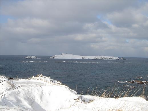 20140123スコトン岬1