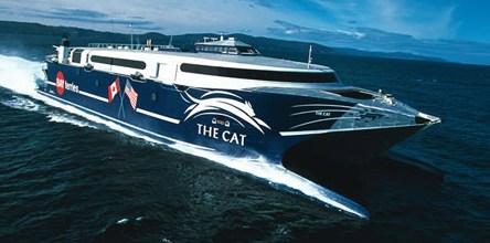 Cat Ferry 2