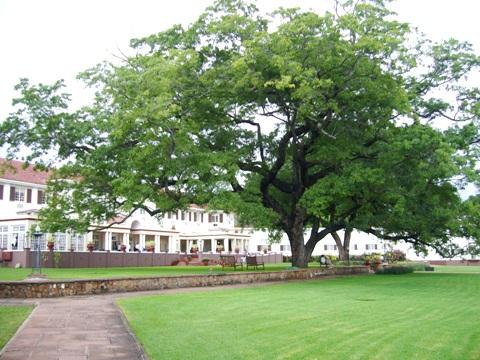 Victoria Falls Hotel Garden
