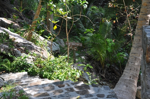 Path to Anse Victorin