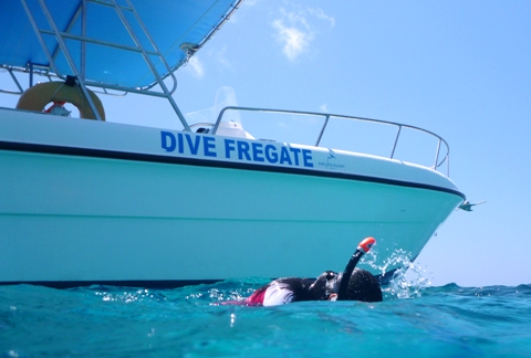 Dive from the Fregate Boat
