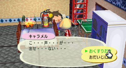 2011_0103ぶつ森0005