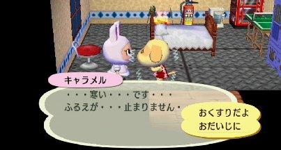 2011_0106ぶつ森0006