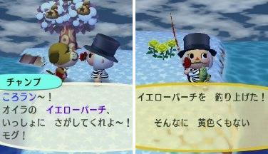 2011_0103ぶつ森0008
