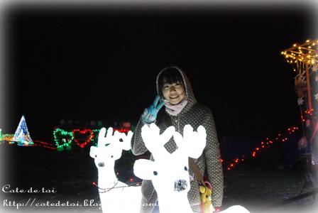 12-104_20121210233103.jpg