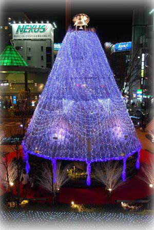 12-11_20101211194833.jpg