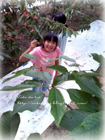 7-12_20110713000611.jpg