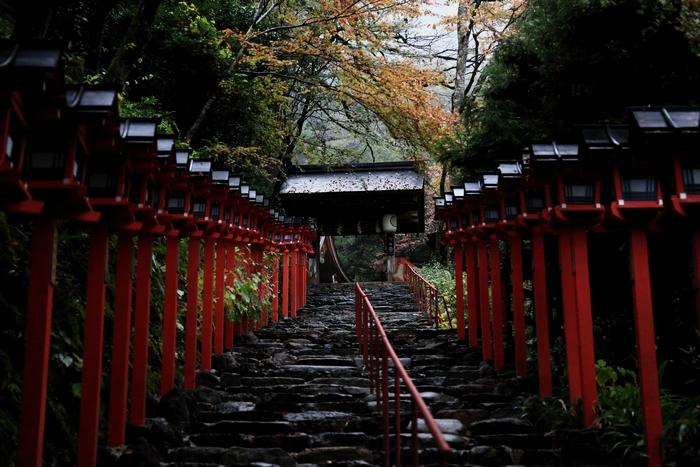 kifune1411_01.jpg