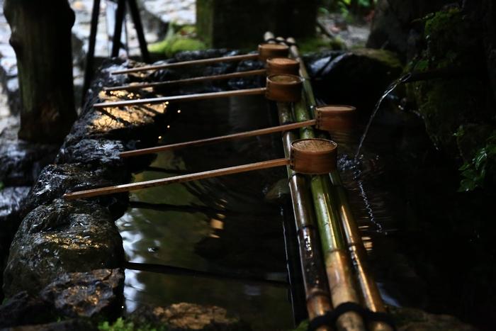 kifune1411_03.jpg
