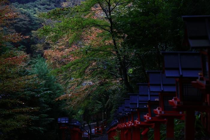 kifune1411_07.jpg