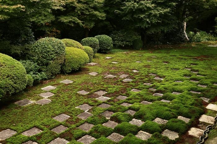 tofukuji1411_10.jpg