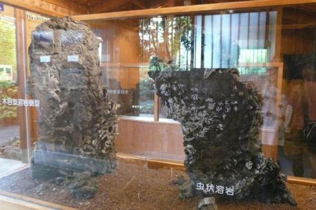 溶岩樹型観察体験ゾーン