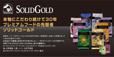 h3_solidgold01_convert_20100417125752.jpg