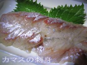 kamasusashimi.jpg