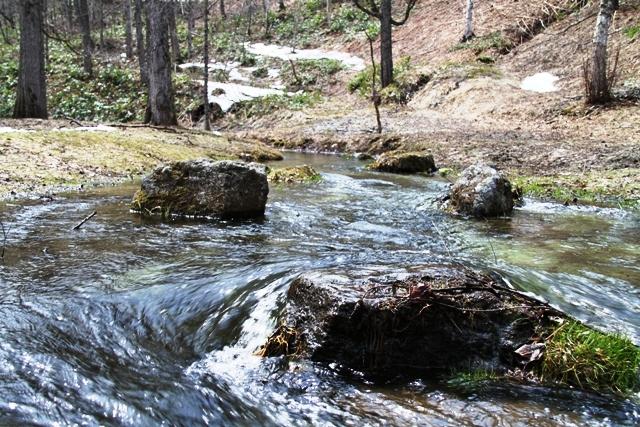 467小川の流れ