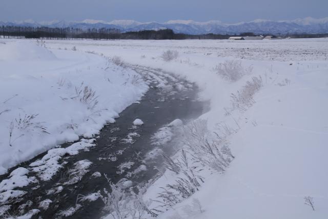 126寒々とした小川と日高山脈
