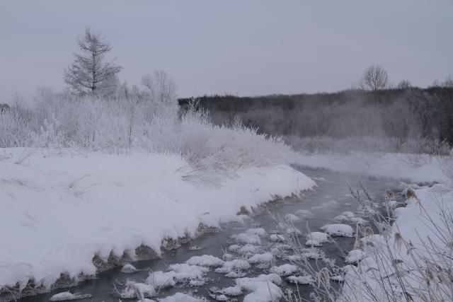170霧氷