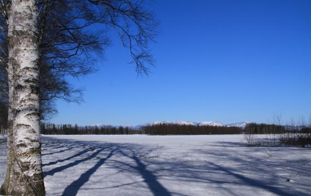 187きれいに見えた大雪山系JPG
