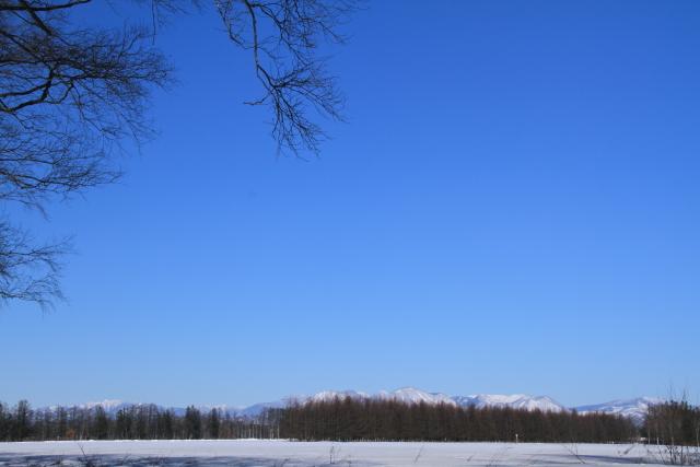 192十勝の青空と山並みのコントラスト