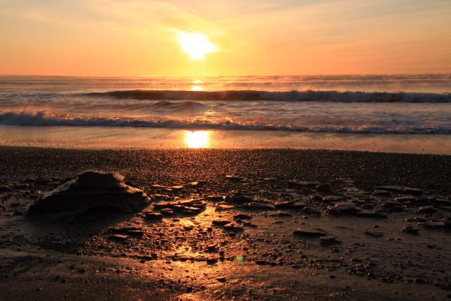 113渚の小石もゴールドに輝いて