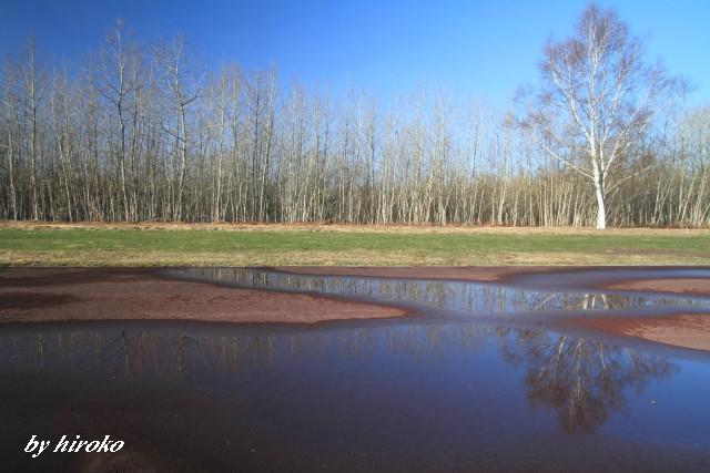 059水溜りの風景