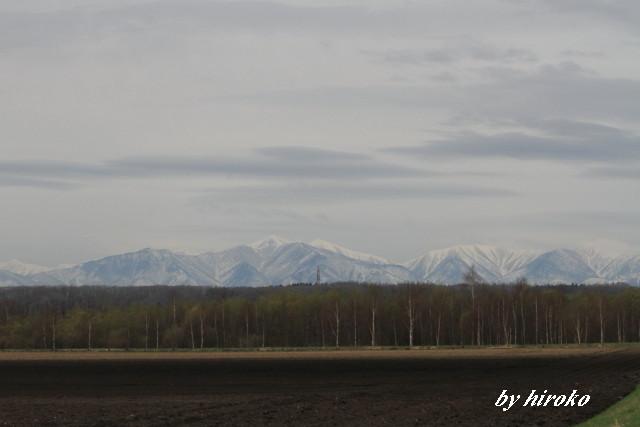 021日高山脈と芽吹き