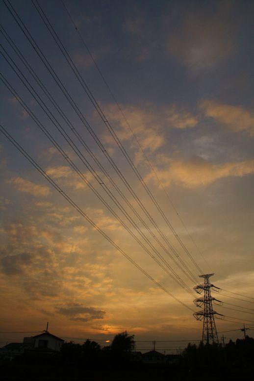 2011061103.jpg